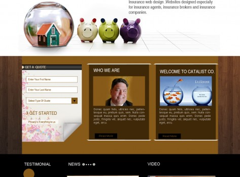 Website Design Catalyst Insurance 3
